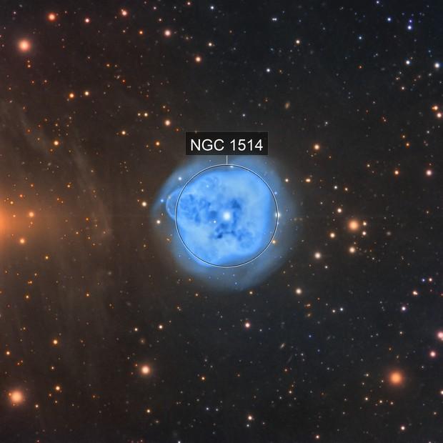 NGC1514