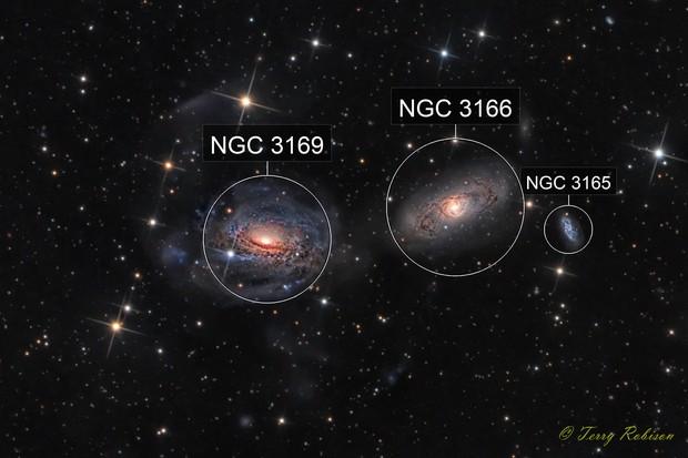 Interacting galaxies - NGC 3169, NGC 3166, and NGC 3165