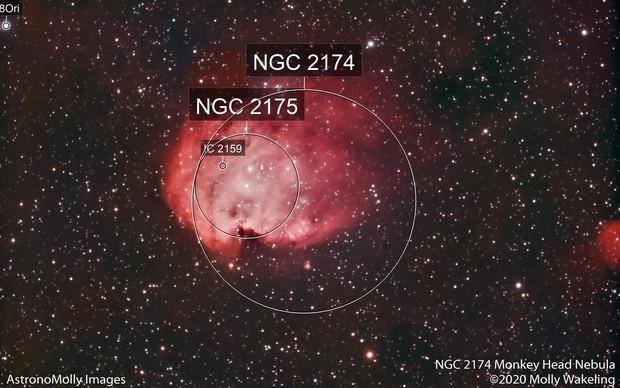 NGC 2174 Monkey Head Nebula #1