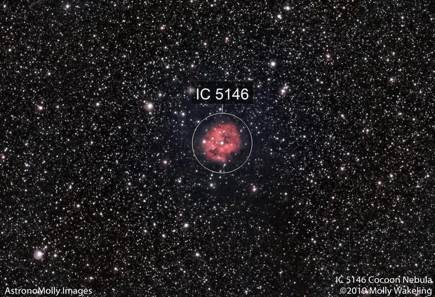 IC 5146 Cocoon Nebula #3