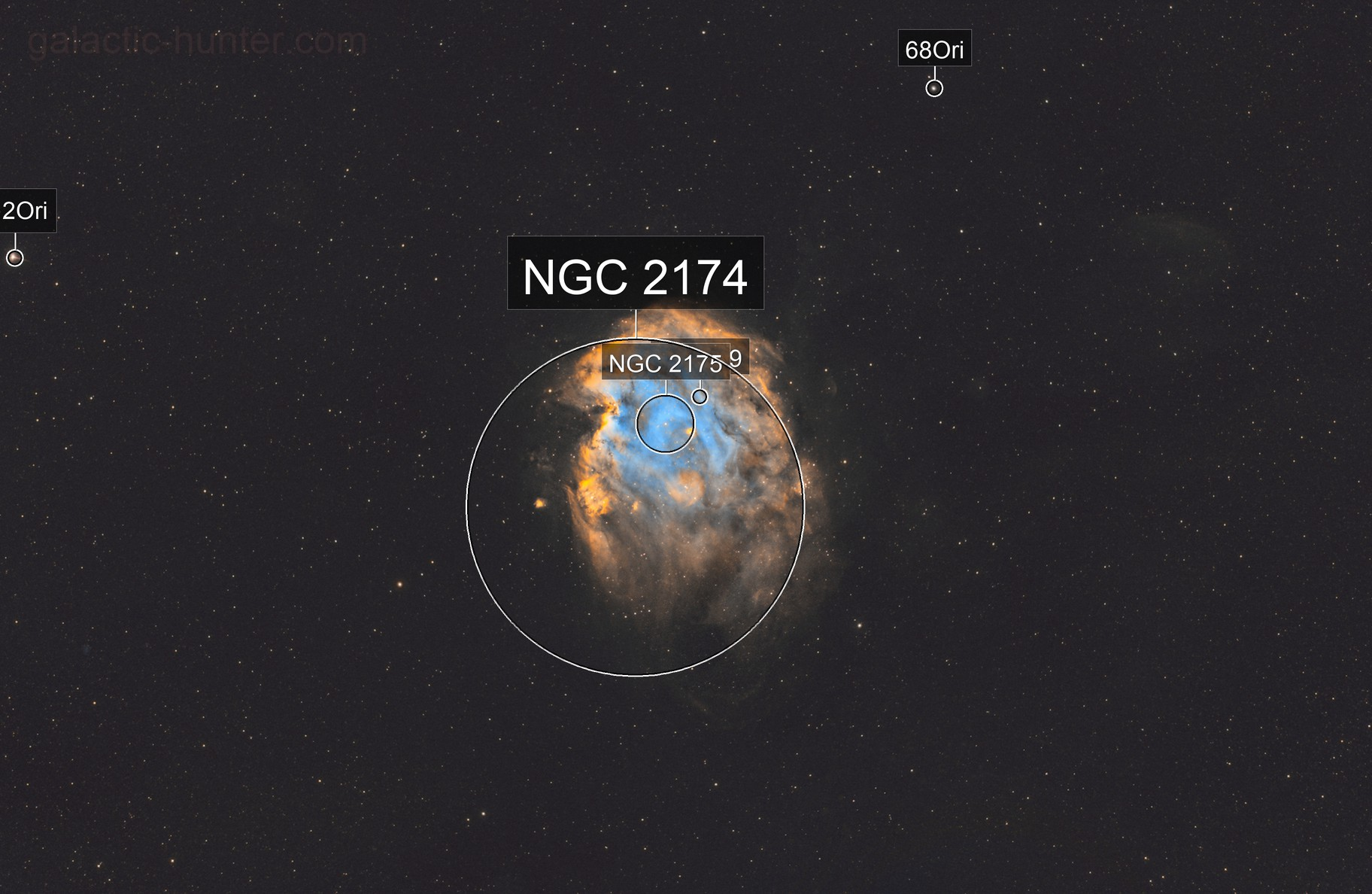 NGC 2174 - The Monkey Head Nebula from the city
