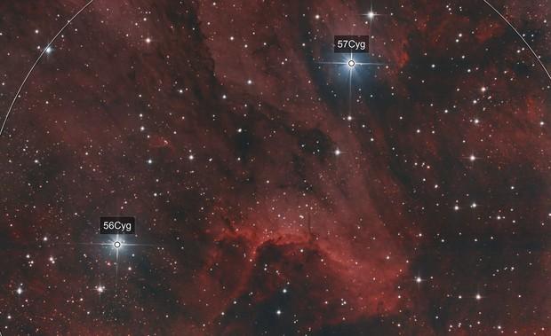 Ic 5070, The Pelican Nebula