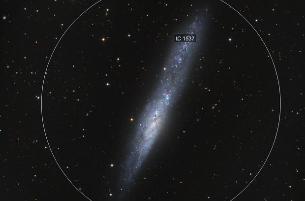 NGC 55 - Whale Galaxy
