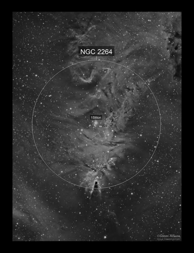 NGC2264 Cone Nebula and Christmas Tree Cluster Ha