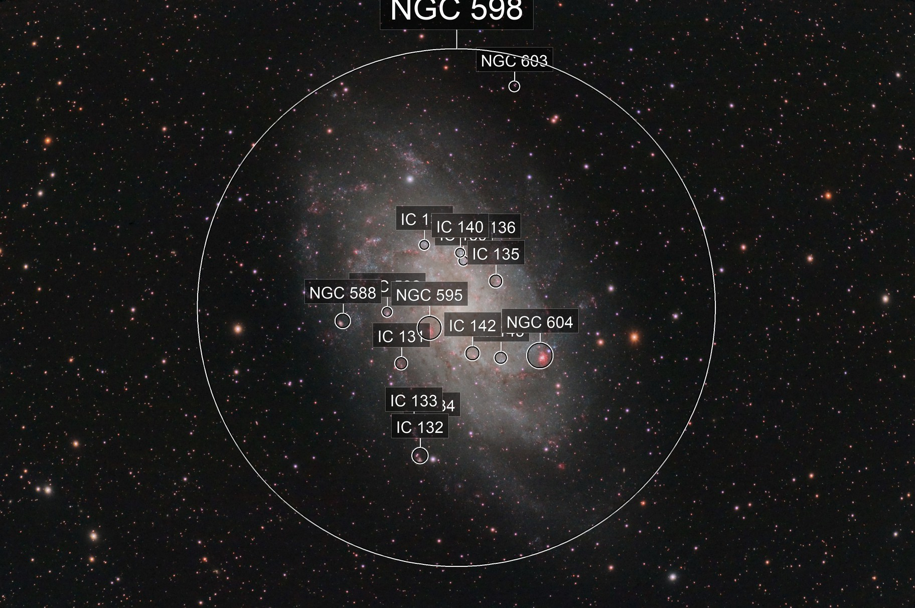 M33 - Triangulum Galaxy under a dark sky!