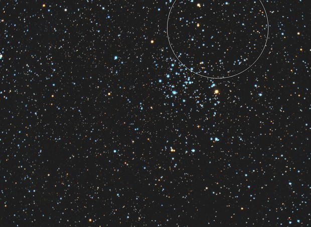 Heart-Shaped Cluster