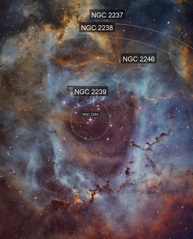 Rosette Nebula Ha-SHO