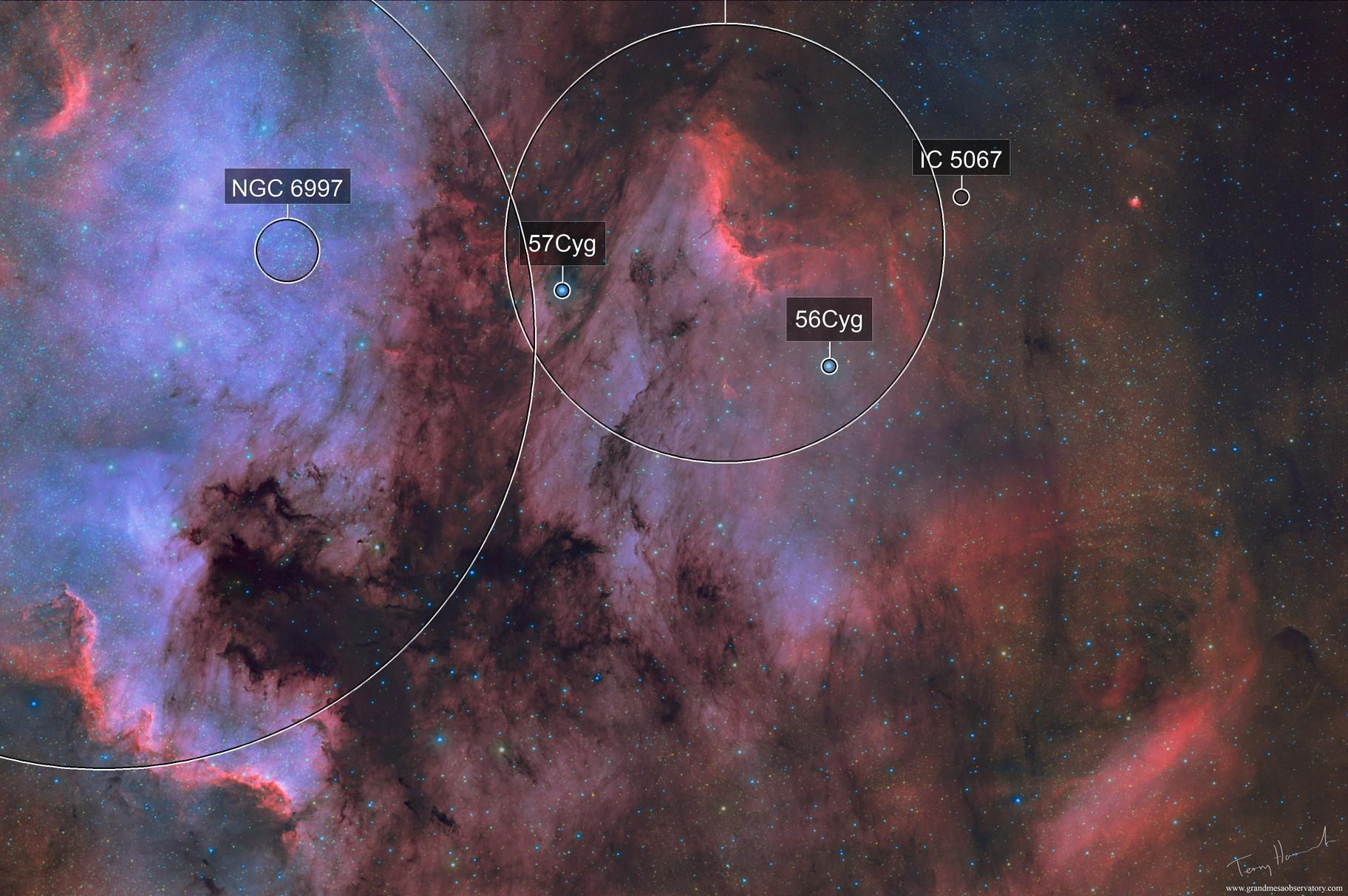 Shadows of The North America Nebula (Bi-Color HA-OIII)