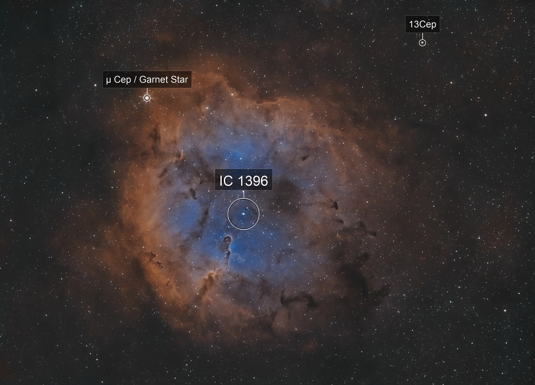IC 1396 - The Elephant in the City