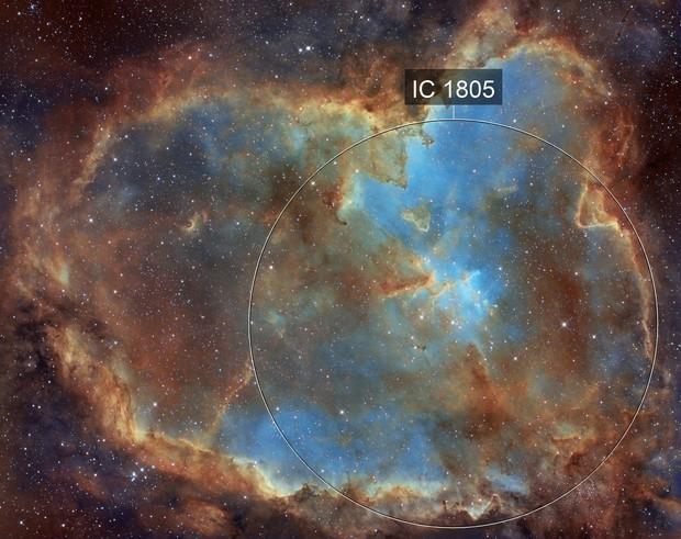 IC1805  IC1795 SHO
