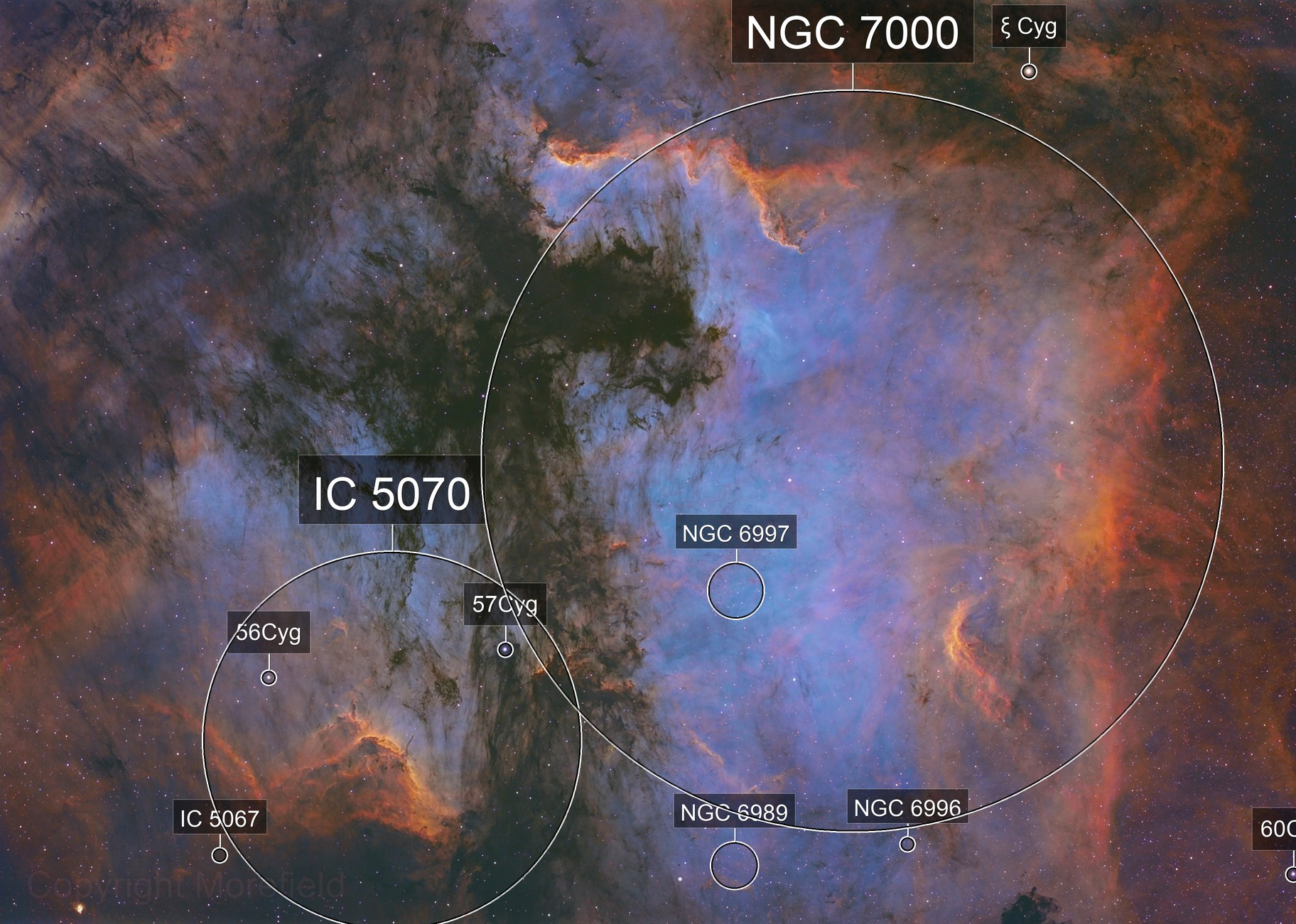 The Mushroom Cloud of Cygnus