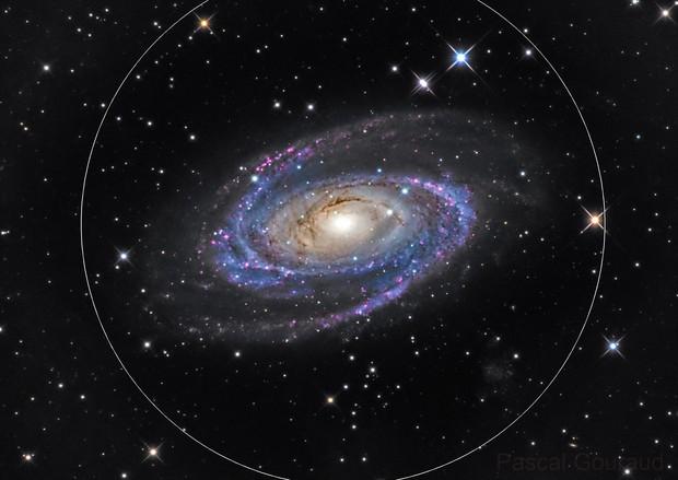 M81 - LHaRGB