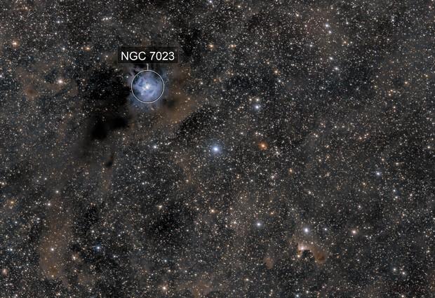 Iris and Ghost Nebula (NGC7023 & VDB141)