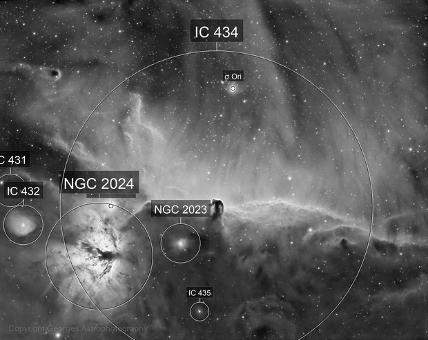 IC434 in Halpha