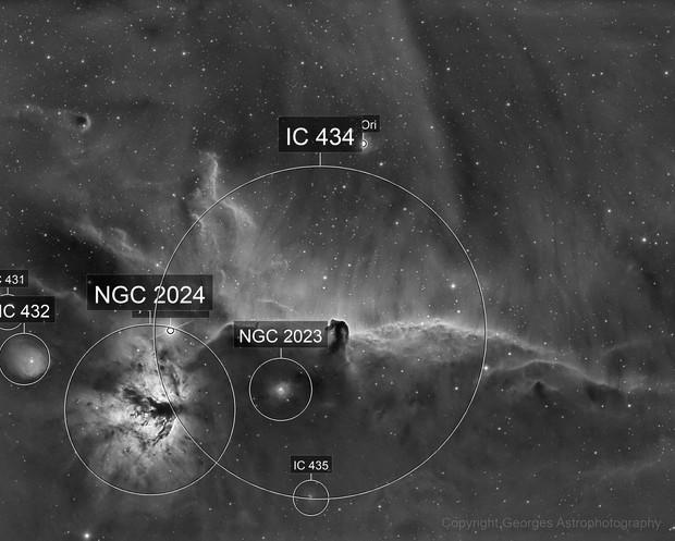 IC 434 en Halpha