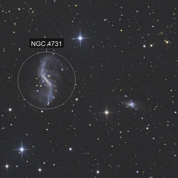 NGC4731