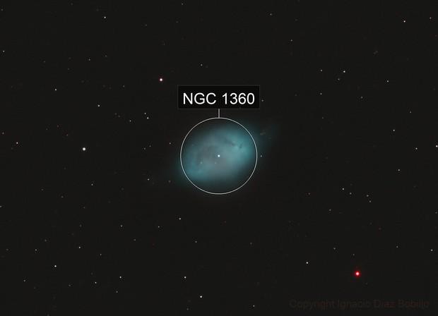 A Bicolor NGC 1360