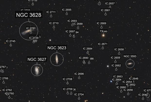 The Leo Triplet (NGC 3628, M65, M66)