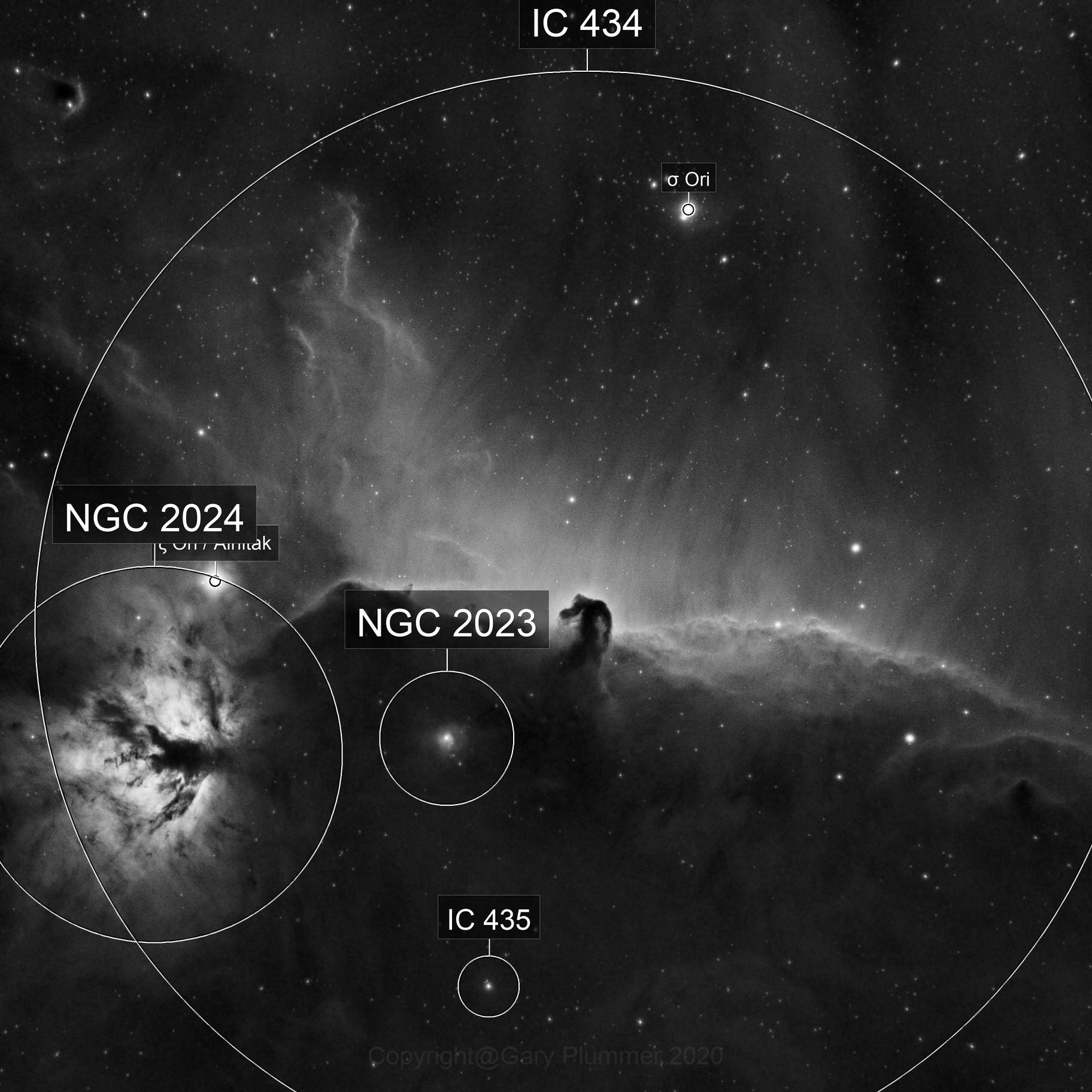 IC434 Horsehead & NGC2024 Flame Nebulae