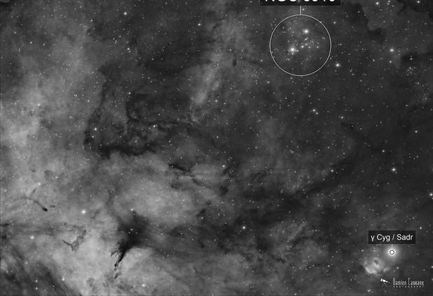 Gamma Cygni Region & NGC 6910