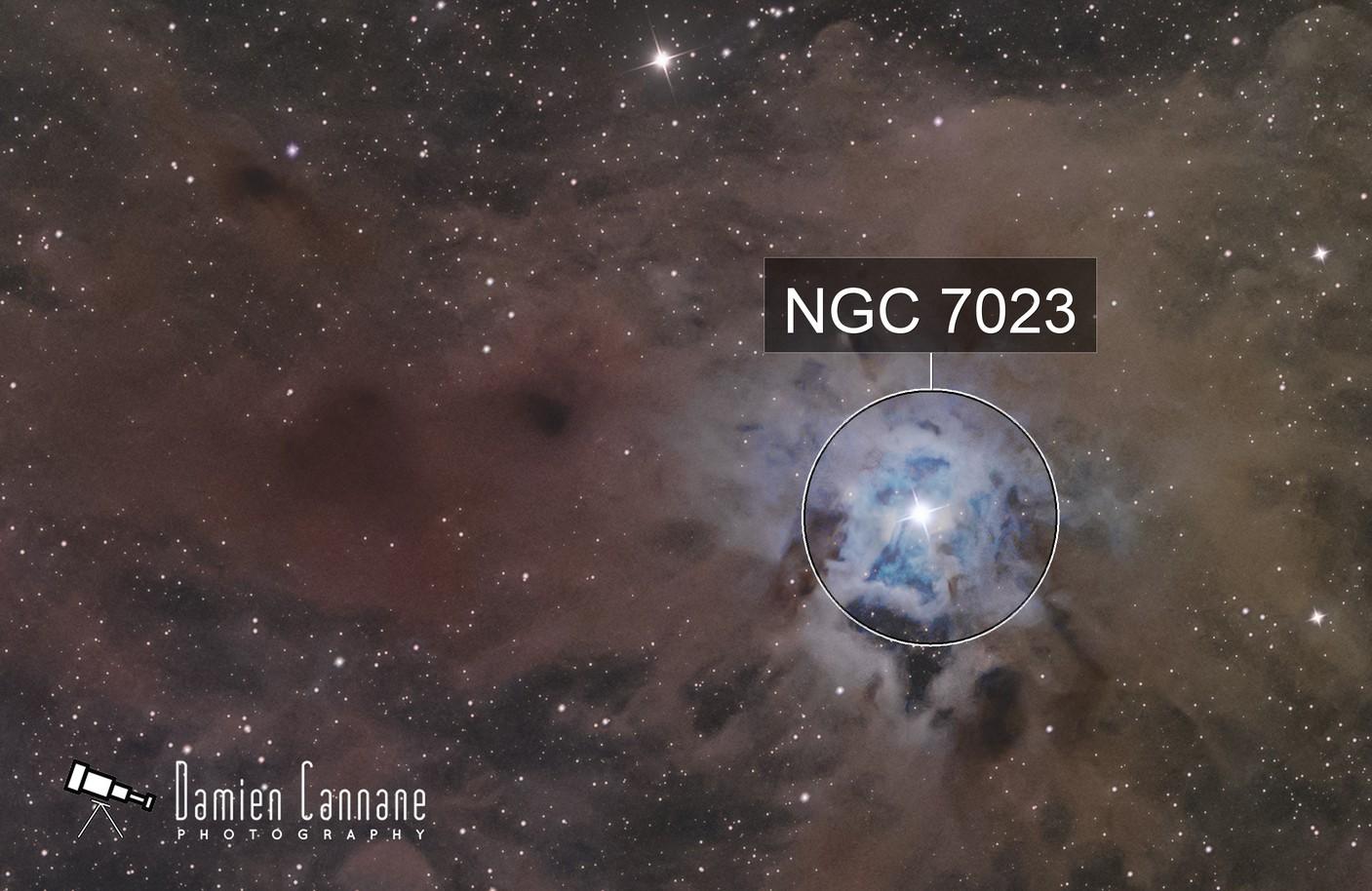The Iris Nebula