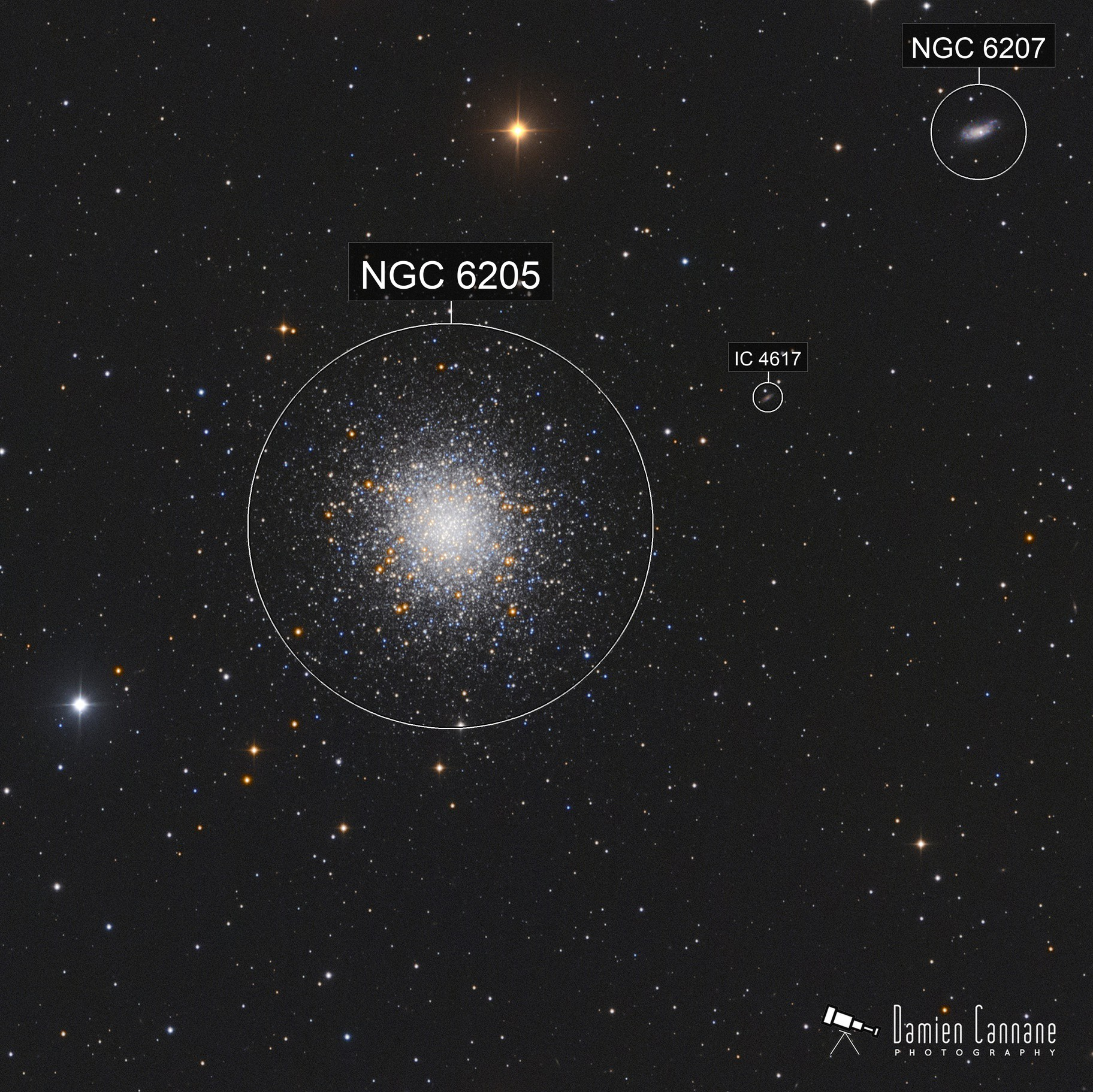 The Great Cluster in Hercules