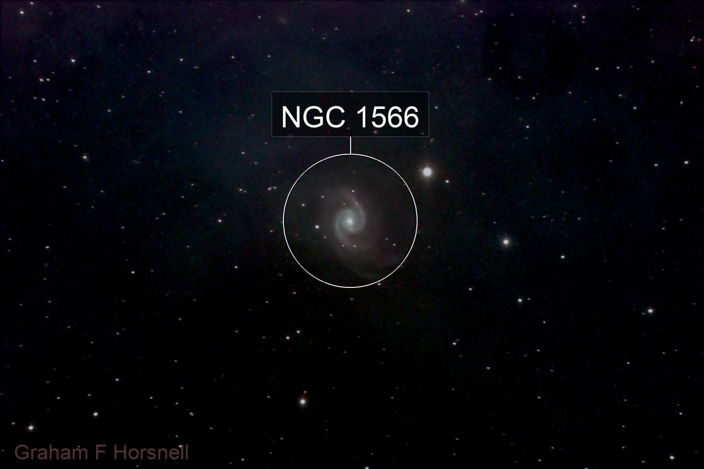 ngc1566