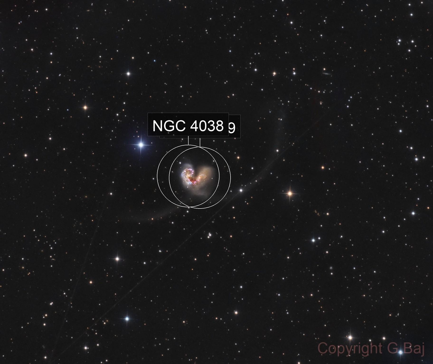 NGC 4038/4039 Galassie Antenne