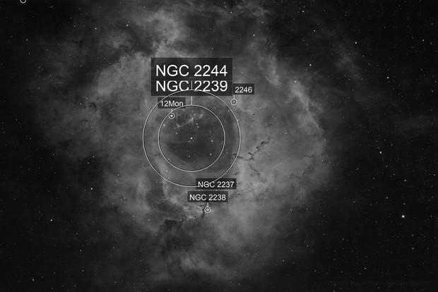 Rosette Nebula Ha - QHY600