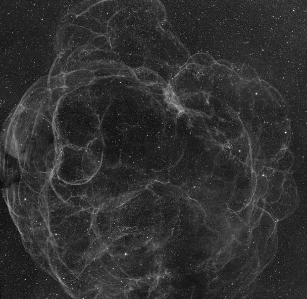 SH2-240 Spaghetti Nebula Mosaic - QHY600 - Esprit 150 - Ha