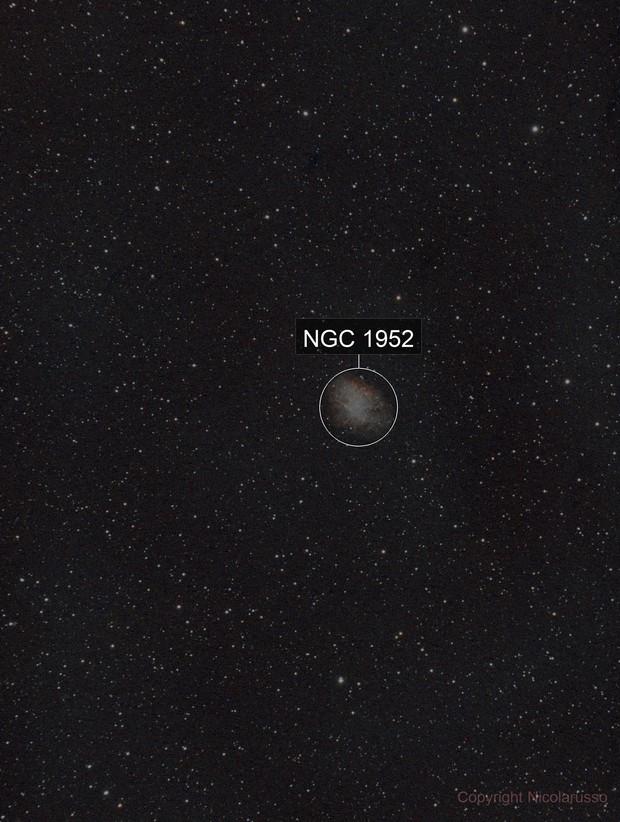Nebulosa Granchio