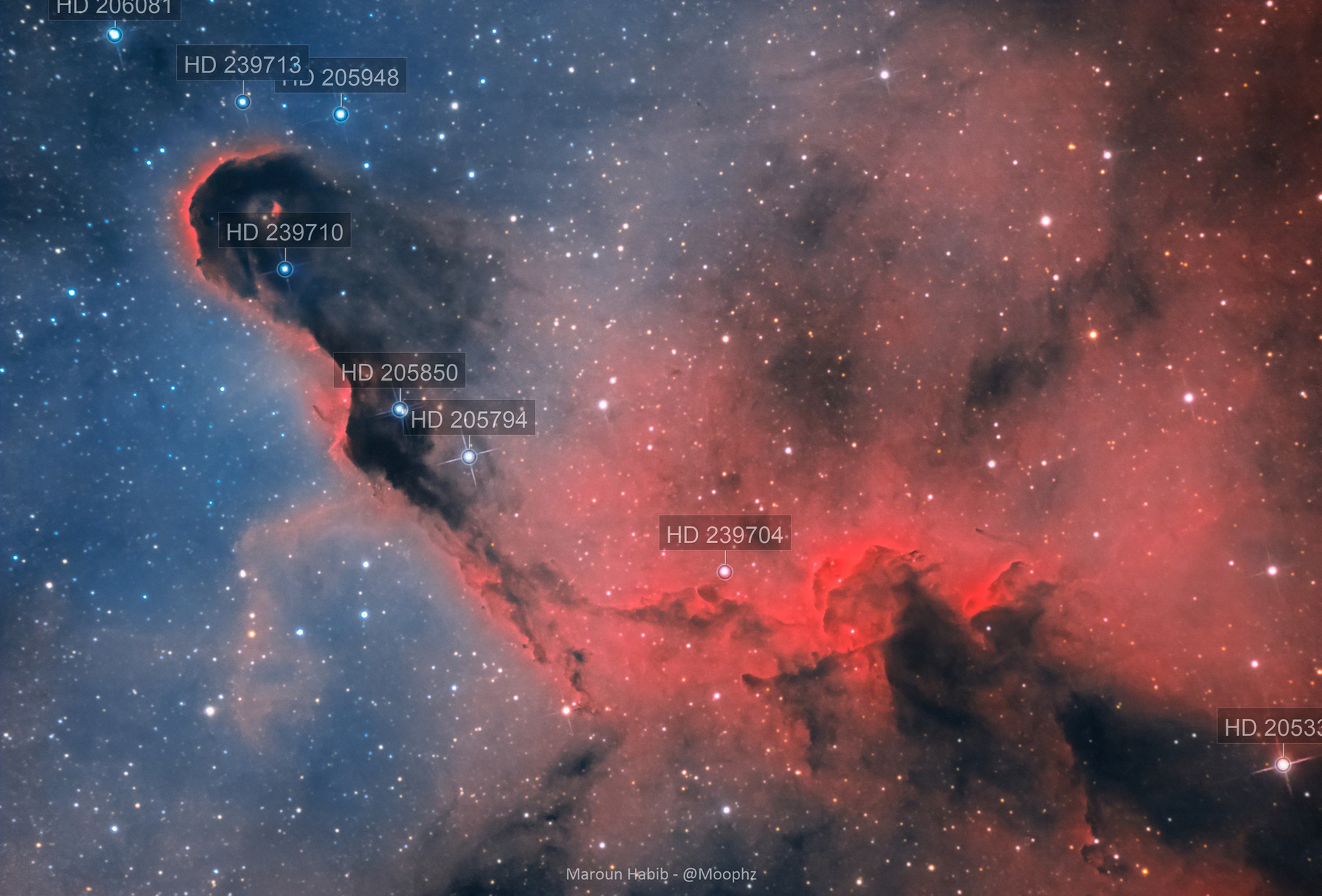 An Elephant's Trunk, Here IC 1396