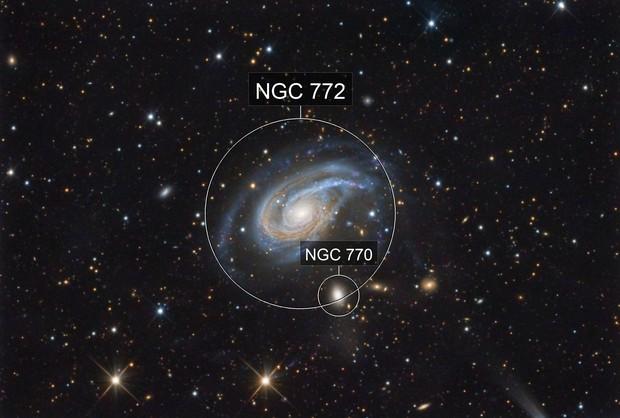 NGC 772 (Arp 78)