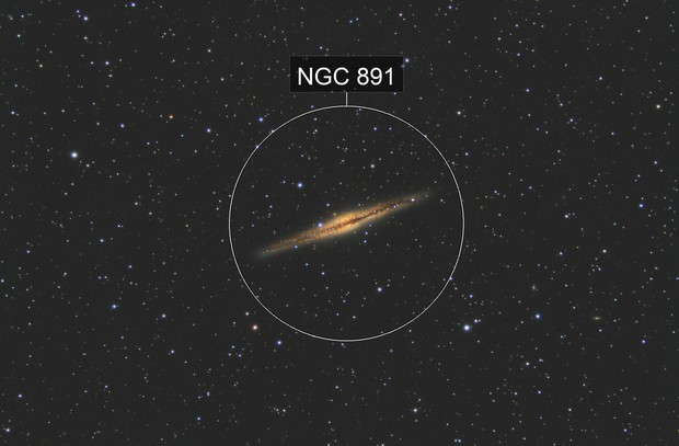 "NGC 891 - EdgeHD 11"""