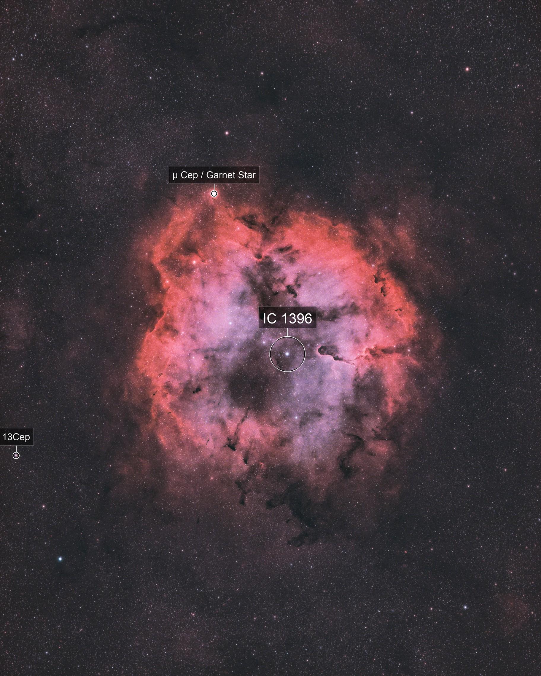 IC 1396 (Radian Raptor 61)