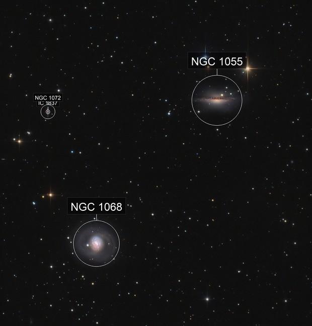 M 77 and NGC 1055