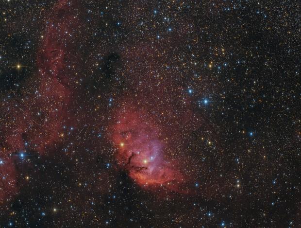 APOD 2019 September 21 - Tulip Nebula, Sh2-101
