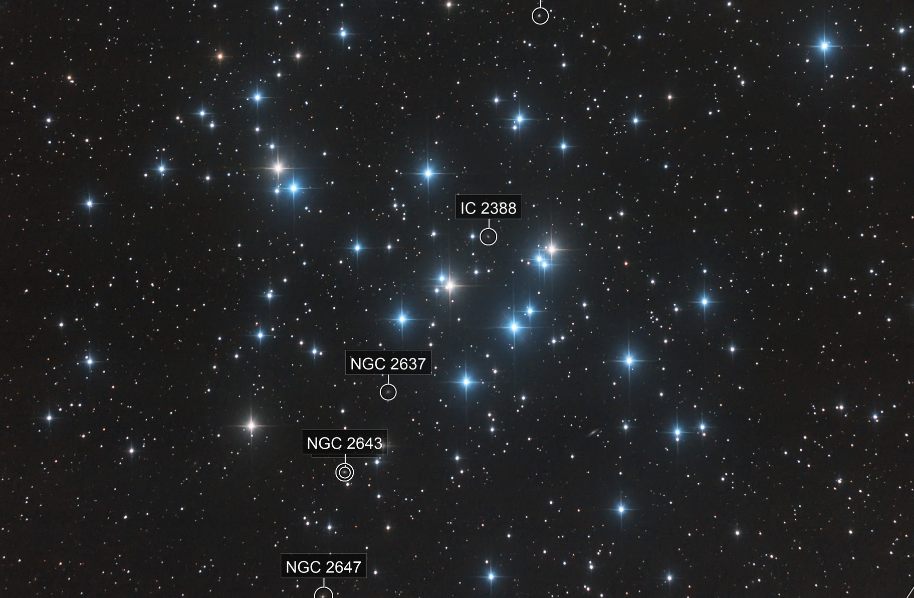 Messier 44: The Beehive Cluster