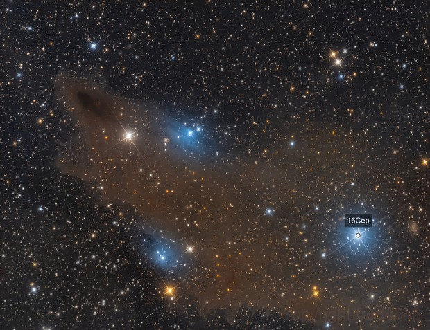 LDN1235 Shark Nebula