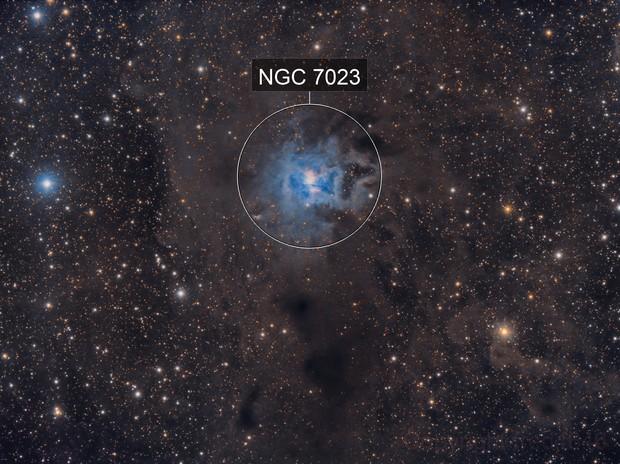 NGC7023 iris