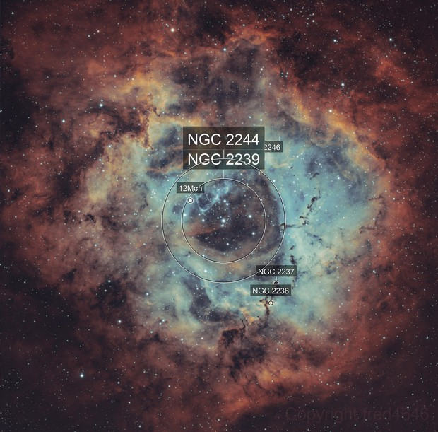 NGC 2237 Rosette nebula HOO
