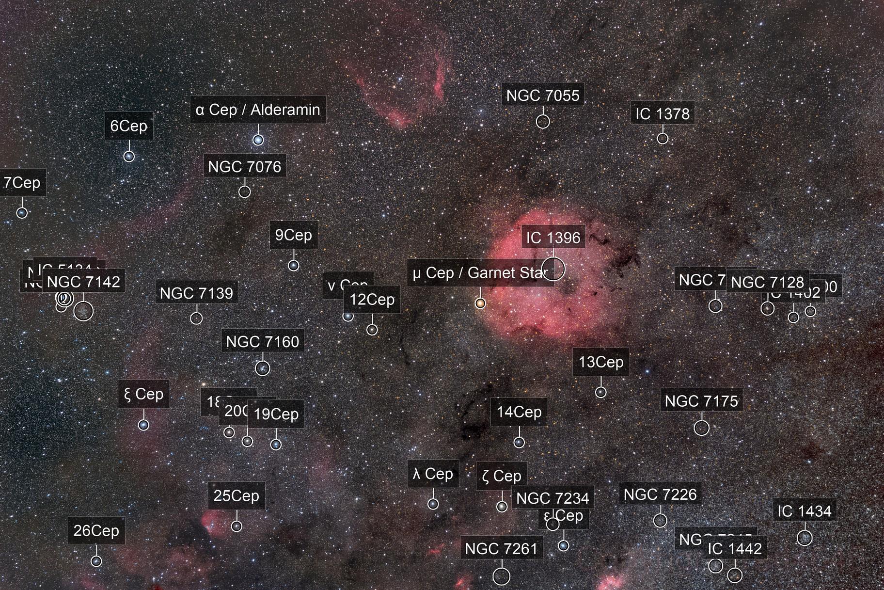 IC1396 Grand champ