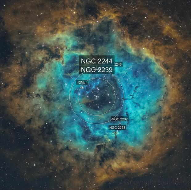 NGC 2237 Rosette nebula SHO