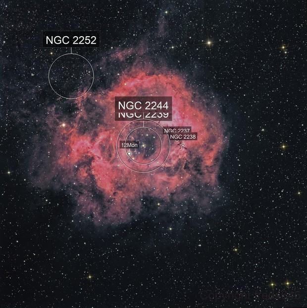 NGC2237 Rosette H-RGB