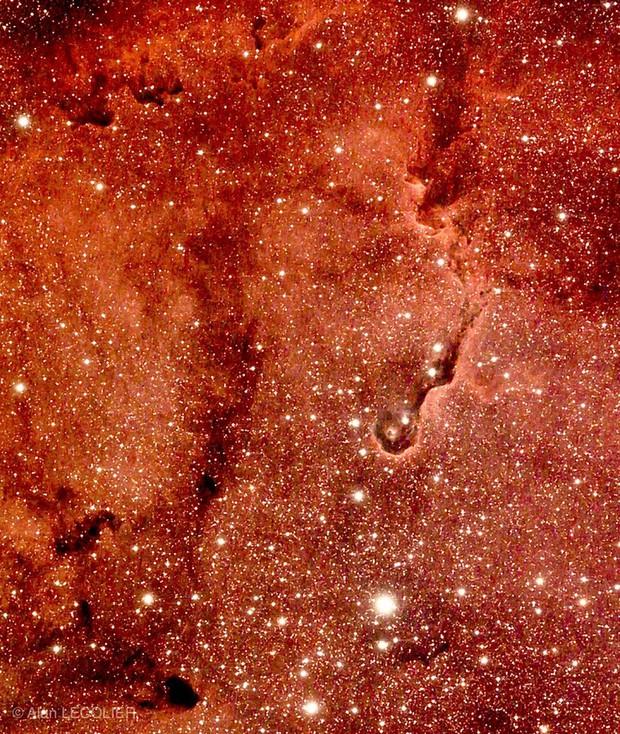 IC 1396 Nébuleuse de la trompe d éléphant