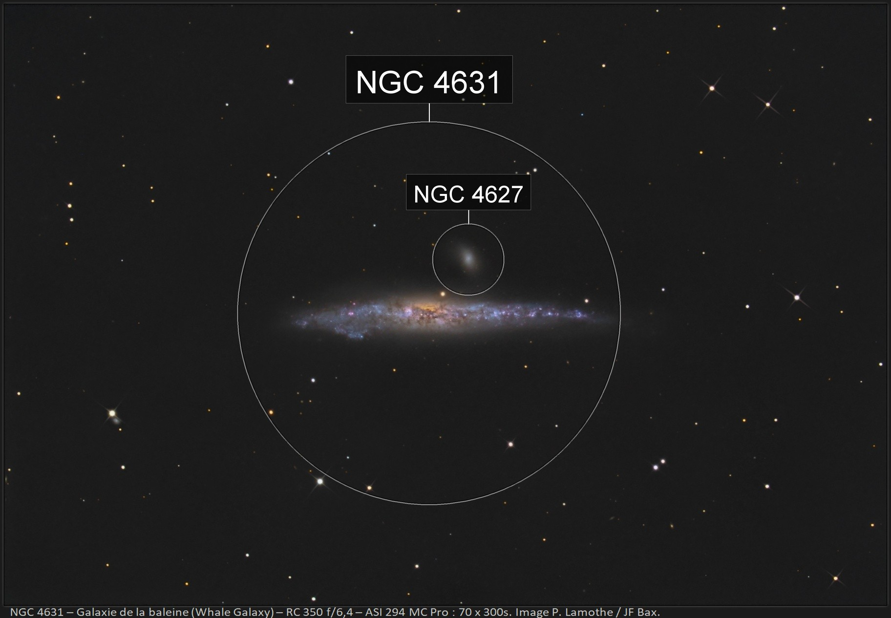 NGC 4631 - Whale Galaxy with ASI 294 MC Pro. Good seeing.