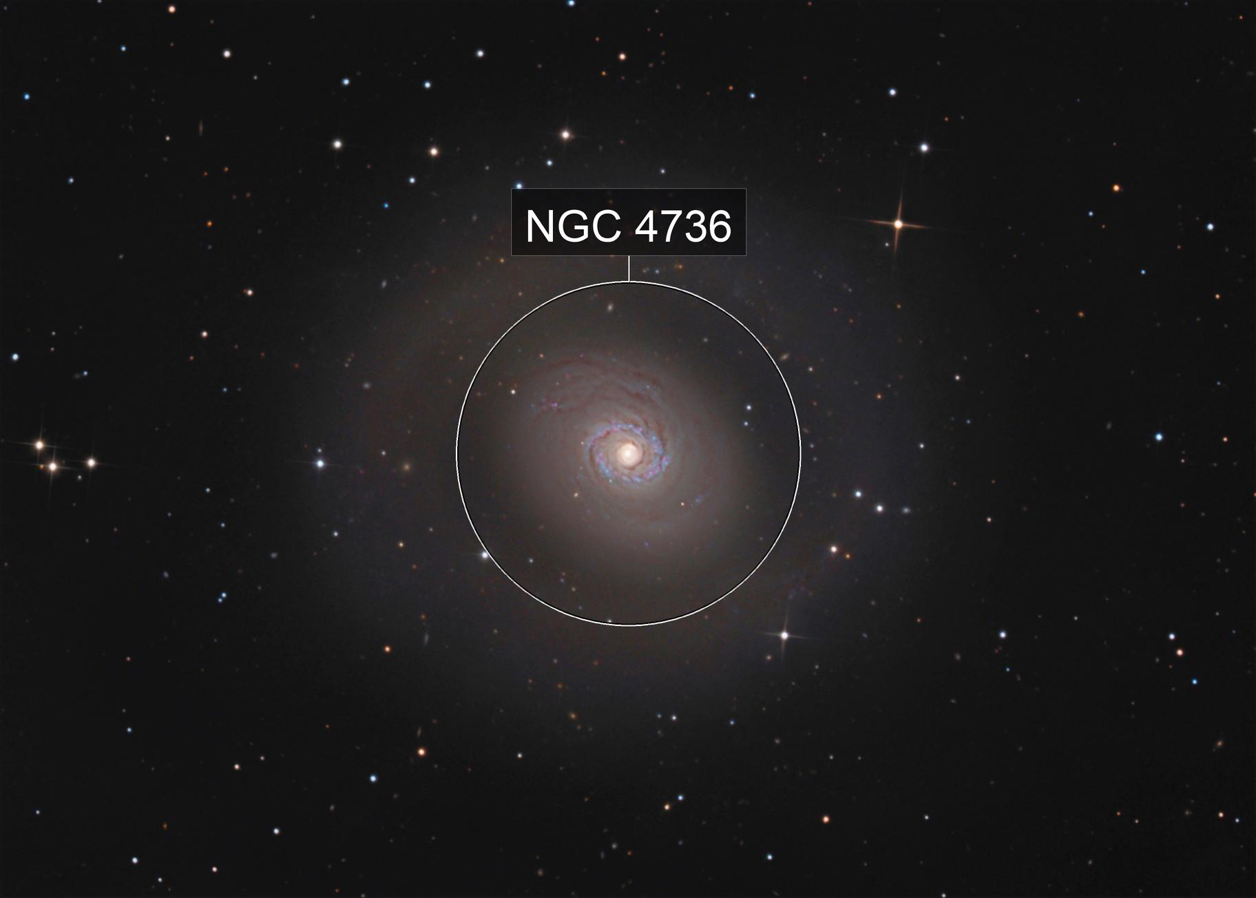 M 94 - ASI 294 MC Pro - Good seeing.