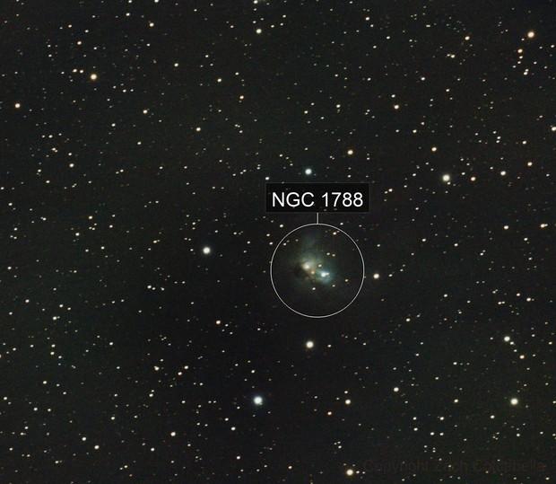 NGC1788  A Reflection Nebula
