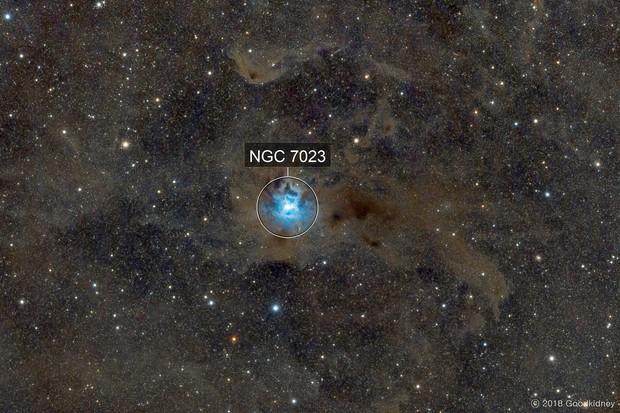 Iris nebula , NGC7023