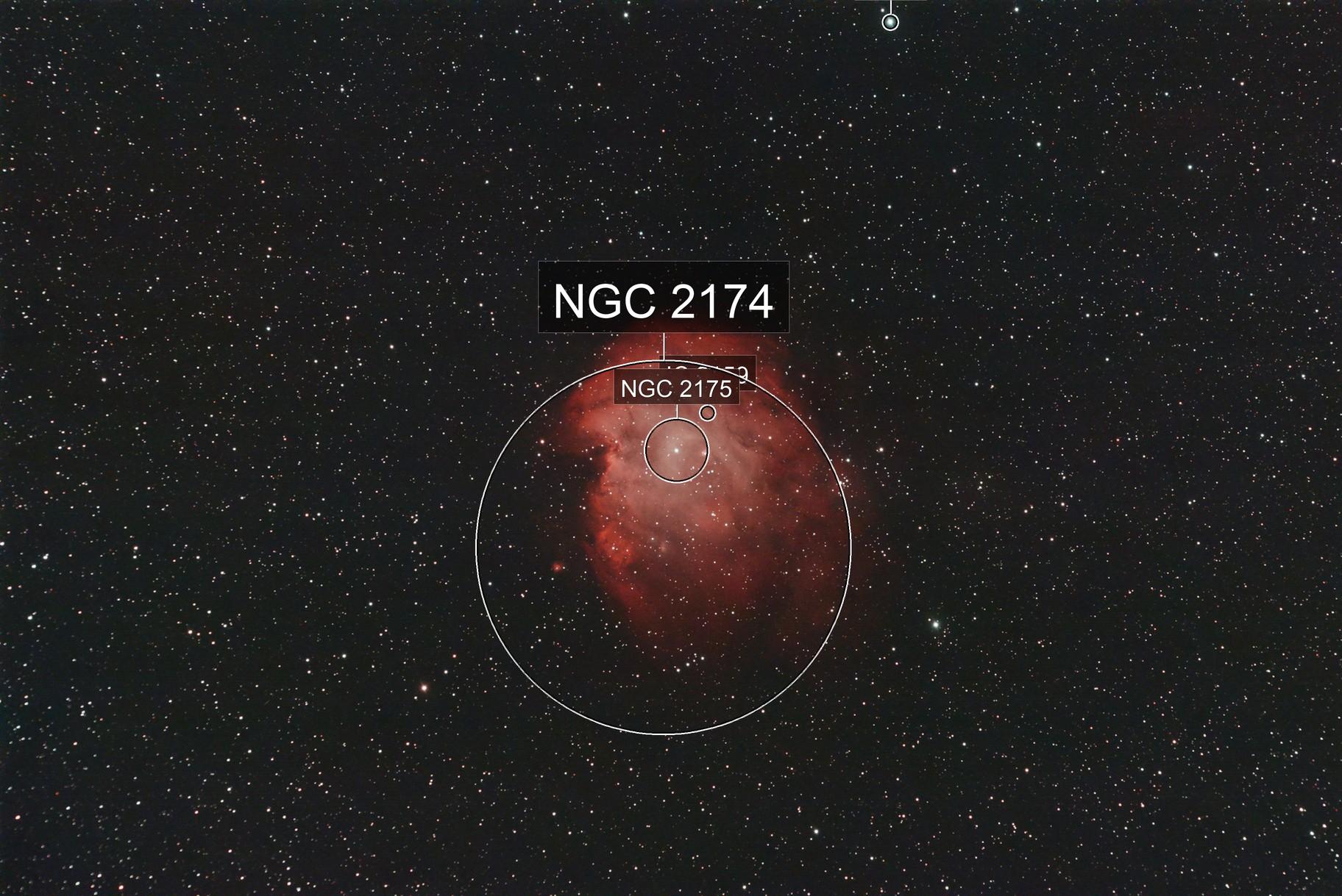 Monkey Head Nebula--NGC 2174